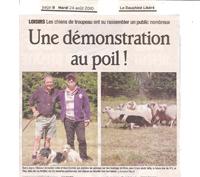 Demo Les Molliets